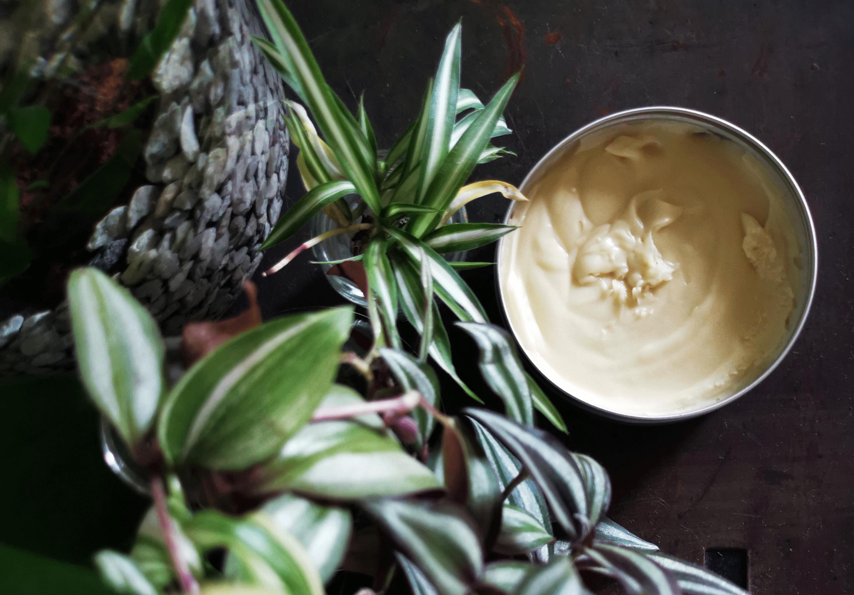 Crème hydratante corps et visage