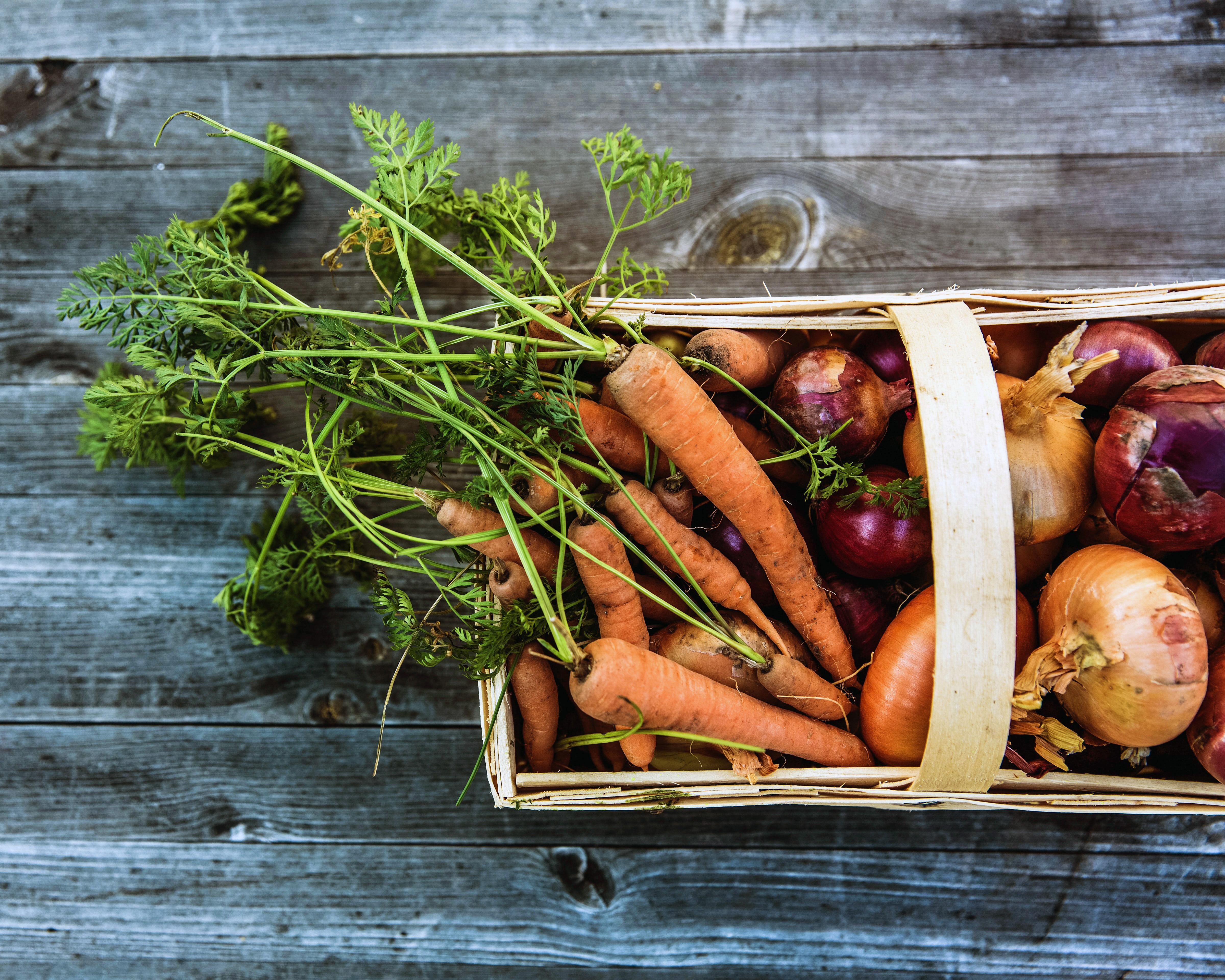 Bouillon d'épluchures de légumes
